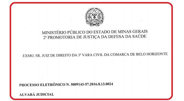 PARECE MINISTÉRIO PÚBLICO CASO NASCITURO