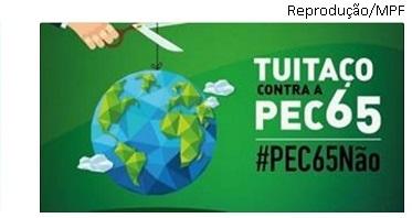 Tuitaço PEC 65